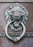 狮子的题头 免版税图库摄影