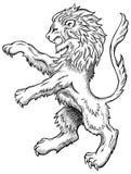 狮子草图 免版税库存照片