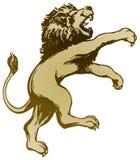 狮子身分 免版税库存照片