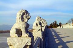 狮子雕塑 免版税库存照片