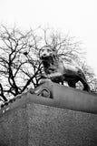 狮子雕象圣彼得堡,俄语在黑白 免版税图库摄影