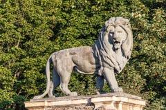 狮子雕象在布鲁塞尔 免版税库存图片