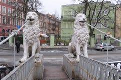 狮子雕象在狮子桥梁的在圣彼得堡 图库摄影
