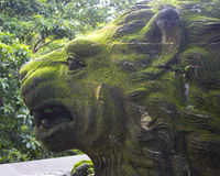 狮子雕象在神圣的猴子森林里在巴厘岛印度尼西亚 库存图片