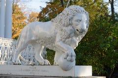狮子雕象在Yelagin宫殿,圣彼德堡前面的 免版税库存照片