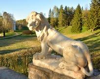 狮子雕象特写镜头 免版税库存照片