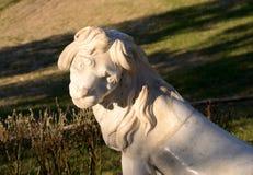 狮子雕象特写镜头 库存照片