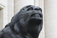 狮子雕象 图库摄影