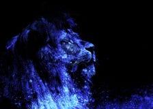 狮子面孔和图表作用 计算机拼贴画 免版税图库摄影