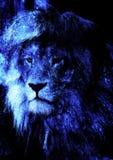 狮子面孔和图表作用 计算机拼贴画 库存图片