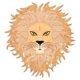 狮子面孔 免版税库存照片