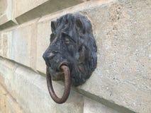 狮子顶头停泊的点 图库摄影