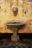 狮子顶头喷泉 库存图片