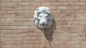 狮子顶头喷泉 影视素材