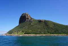 狮子顶头峰顶在开普敦,南非 免版税库存照片