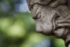 狮子顶头雕象有bokeh背景 库存照片