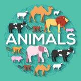 狮子,猴子,猴子,骆驼,大象,母牛,猪,绵羊的动物圆的概念 传染媒介例证背景设计 免版税库存照片