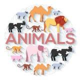 狮子,猴子,猴子,骆驼,大象,母牛,猪,绵羊的动物圆的概念 传染媒介例证背景设计 库存照片