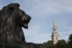狮子Trafalgar广场 免版税库存图片