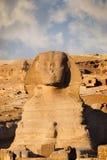 狮身人面象和金字塔 免版税图库摄影