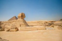 狮身人面象在吉萨棉在埃及 库存照片