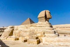 狮身人面象在吉萨棉,有pyriamid的埃及在背景中 图库摄影