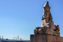 狮身人面象埃及雕象在圣徒Peterburg的 免版税库存照片