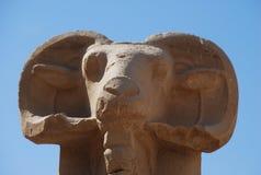 狮身人面象的大道 复杂karnak寺庙 免版税库存照片