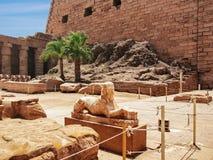 狮身人面象的雕象,寺庙的墙壁和两棵棕榈树在背景中 免版税库存照片