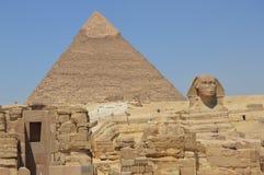狮身人面象站立感到骄傲在Cheops前面,开罗,埃及金字塔  免版税库存图片