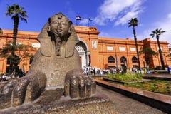狮身人面象雕象和开罗埃及人博物馆 免版税库存照片