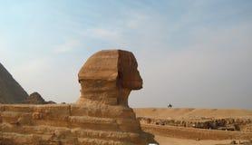 狮身人面象雕象在吉萨棉埃及 古老结构 免版税库存照片