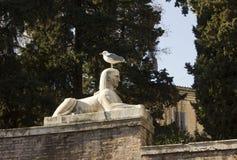 狮身人面象雕象在Piazza del Popolo在罗马 免版税库存图片