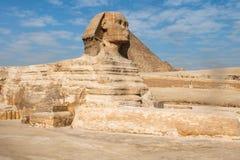 狮身人面象 埃及 免版税库存照片