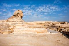 狮身人面象 埃及 库存图片