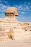 狮身人面象 埃及 库存照片