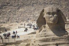 狮身人面象头的特写镜头视图有金字塔的在开罗附近的吉萨棉, 免版税库存图片