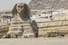 狮身人面象头的特写镜头视图有金字塔的在开罗附近的吉萨棉, 图库摄影
