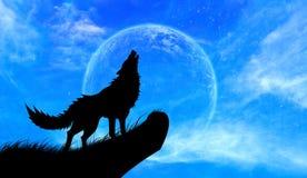 狼嗥叫满月 库存照片