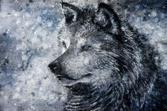 狼在多雪的背景中 免版税库存图片