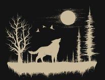 狼在奇怪的森林里 皇族释放例证