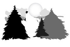 狼在森林 库存照片