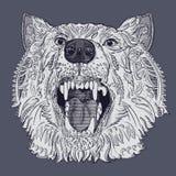 狼头 免版税库存照片
