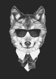 狼画象在衣服的 图库摄影