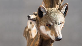 狼头雕刻 免版税库存照片
