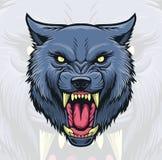 狼头 免版税库存图片
