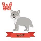 狼 W信件 逗人喜爱的在传染媒介的儿童动物字母表 滑稽的c 免版税库存图片