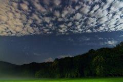 猎户星座的美好的夜空星座 库存图片
