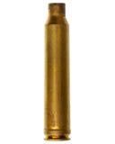 猎枪弹药筒 免版税库存照片