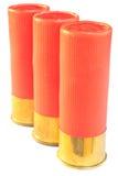 猎枪12口径的弹药筒 免版税图库摄影